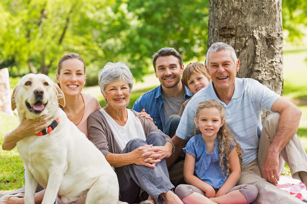 Tipps für Hundehalter, die Tierhaftpflichtversicherung