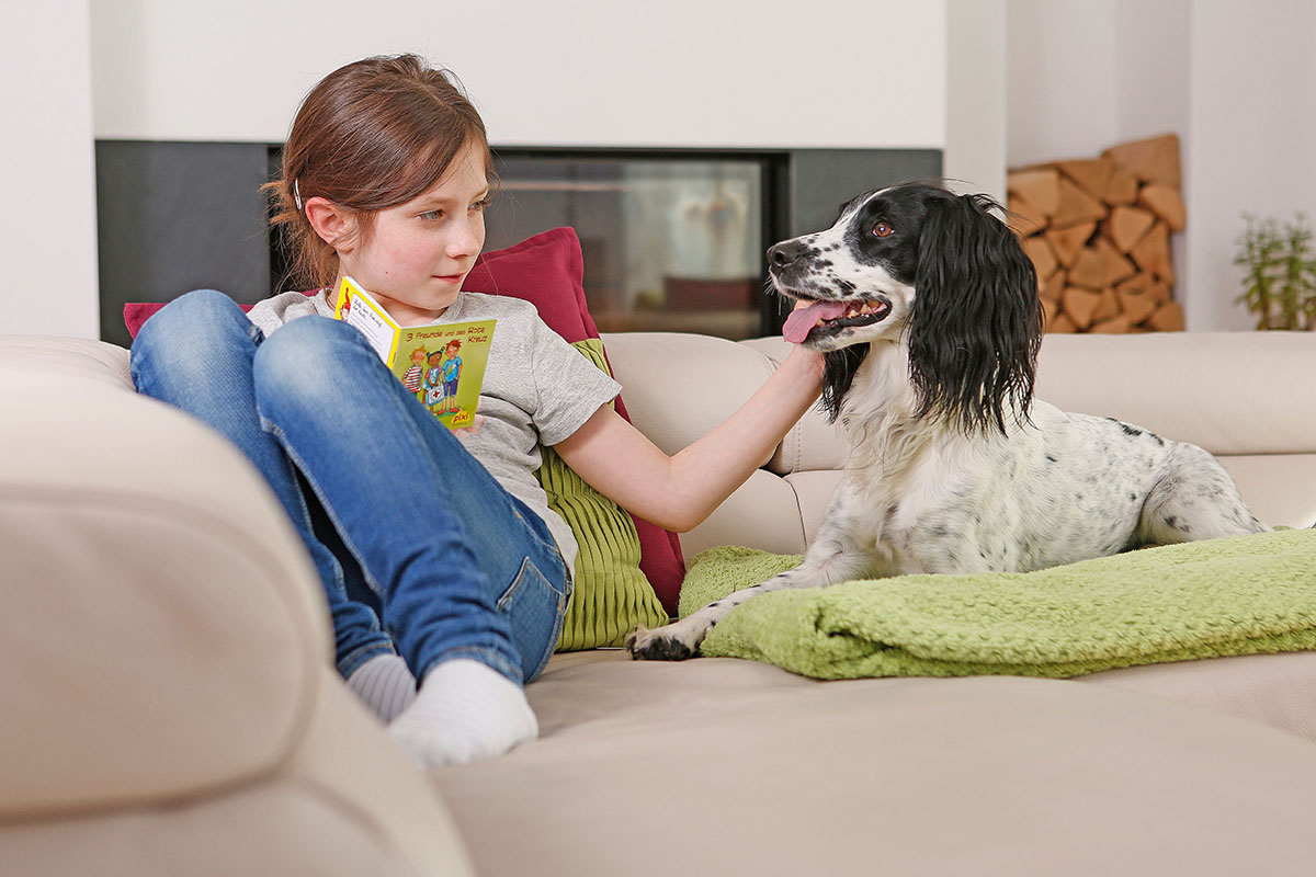 Athrose bei Hunden